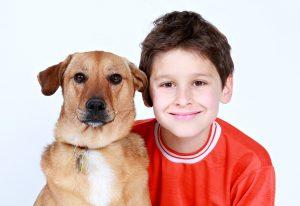 jongen, kind, hond, kindercursus,cursus, hond,